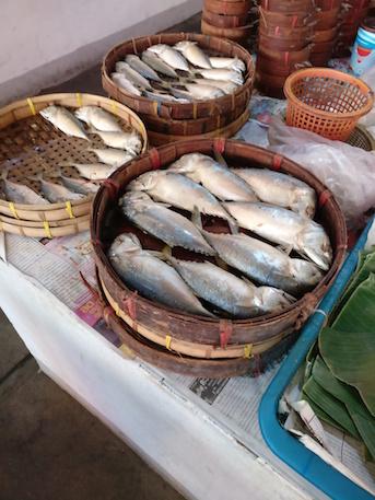 Kochschule Chiang Mai Markt Fisch